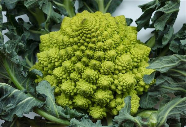 minestra pasta e broccoli romaneschi