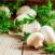ricetta straccetti manzo funghi champignon
