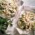 insalata pollo ricetta