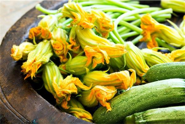 ricetta pasta fiori di zucca zucchine kosher